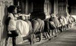 Gastkommentar zum Ramadan: Nichts essen, nichts trinken, nichts lernen