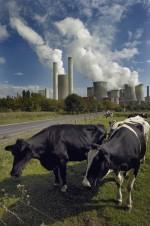 Klimawandel ist das Thema des WWF-Angebots für Jugendliche. (Foto: WWF)