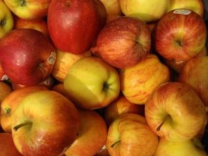 Heimische Produkte - wie Äpfel - sollen in Schulen und Kindergärten aufgetischt werdern, fordern Politiker. Foto: Olle Svensson /  Flickr (CC BY 2.0)