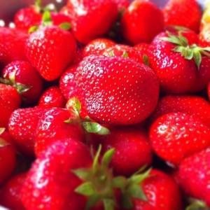 In Verdacht: Erdbeeren. Foto: Hallyway / Flickr (CC BY-SA 2.0)