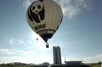 Der WWF hat auch ein Kinder- und Jugendprogramm. (Foto: Jose Cruz/ABr/Wikimedia CC BY 3.0 BR)