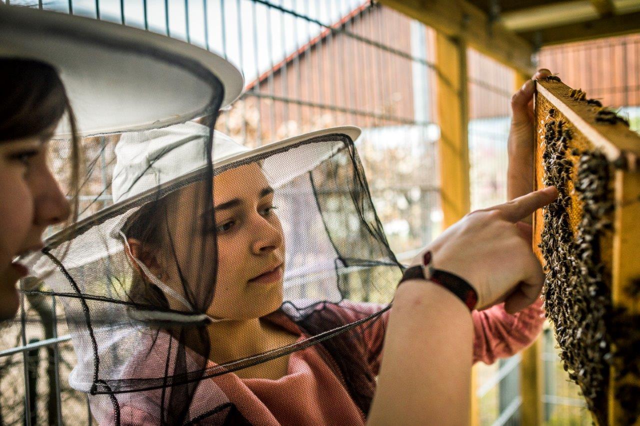 Naturwissenschaften werden an der Schule ganz praktisch gelehrt. (Foto: Theodor Barth/PR)