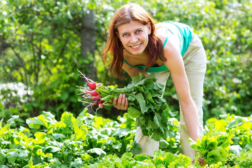 Ein Foto von der Gartenarbeit bei Facebook posten? Damit gab Marie Leimiger zu viel von sich für ihre Schüler preis – und machte sich angreifbar.