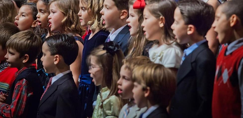 Sparen am Fach Musik, um Flüchtlingskinder beschulen zu können - Verbände sind empört. Foto: dankreider / pixabay (CC0 1.0)