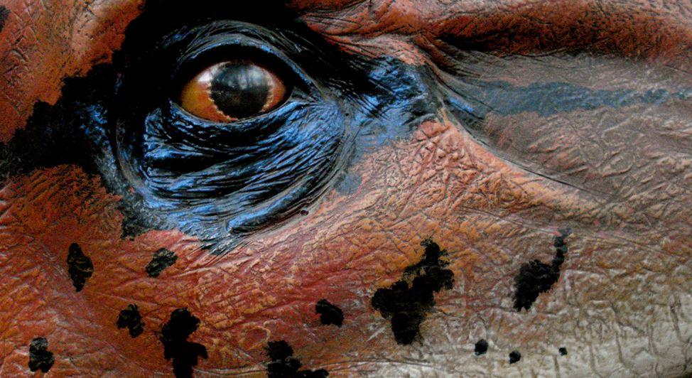 Anhand von Dinosaurier - hier ein Modell im Oxford University Museum of Natural History - lässt sich die Geschichte von der Entwicklung der Arten kindgerecht zeigen. Foto: allispossible.org.uk / flickr (CC BY 2.0)