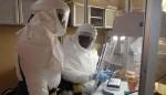 Forscher untersuchen Blutproben auf den Ebola-Virus. Foto: Dr. Randal J. Schoepp / Wikimedia Commons (CC BY 2.0)