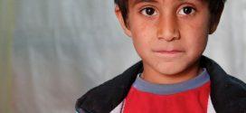 """Flüchtlingskinder: """"Ich sehe die Gefahr, dass wir zu viele verlieren"""" – Bildungsforscherin mahnt mehr Unterstützung für Schulen an"""