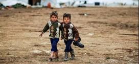 Flüchtlingsstrom sorgt für volle Kurse in Volkshochschulen – Deutschlehrer werden knapp