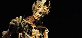 Kinder, die auf Leichen starren – Museum provoziert mit Anatomiekurs für Schüler