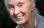 Forscherin und Aktivistin: Jane Goodall wird 80. Foto: Nick Stepowyj / Wikimedia Commons (CC BY 2.0)