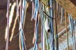 Die ostdeutschen Städte wollen Bund und Länder stärker in die Pflicht nehmen um beim Ausbau der digitalen Bildung mit anderen europäische Länder Schritt halten zu können. Foto: Michael Gaida / pixabay (CC0 1.0)