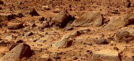 """Nach einem Jahr zurück vom """"Mars"""""""