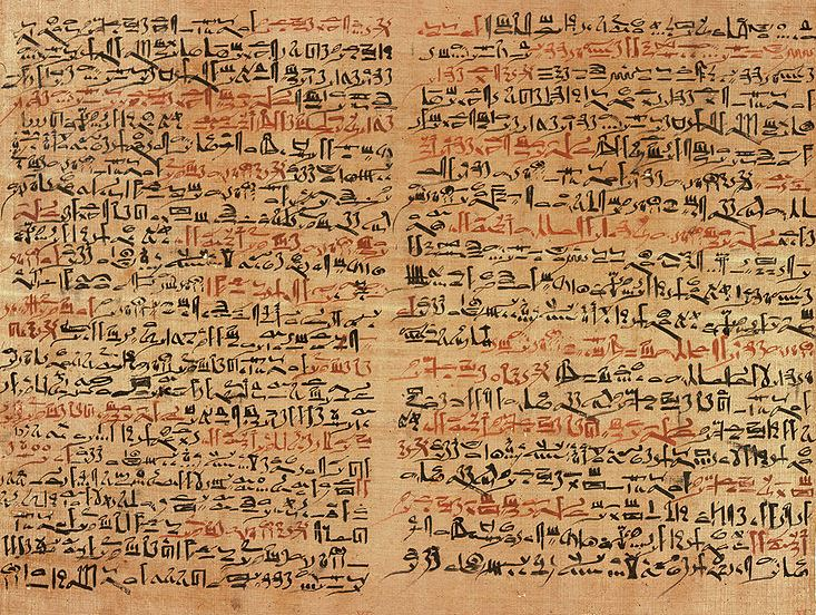 Dieses Papyrus ist rund 3600 Jahre alt. Foto: Jeff Dahl / Wikimedia Commons
