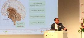 """""""Frontalunterricht hat Sinn"""" – Neuropsychologe räumt mit Irrtümern in der Pädagogik auf"""