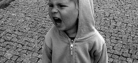 VBE: Lernerfolg hängt auch von der Erziehung ab – also: Verantwortung der Eltern (bei PISA und Co.) nicht vergessen!