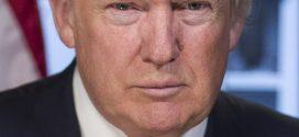 Das deutsche Erfolgsmodell Duale Ausbildung beeindruckt selbst Donald Trump – Deutschland macht es zum Exportschlager