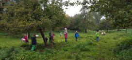 Klingler-Preis für umweltbewusste Kinder und Jugendliche