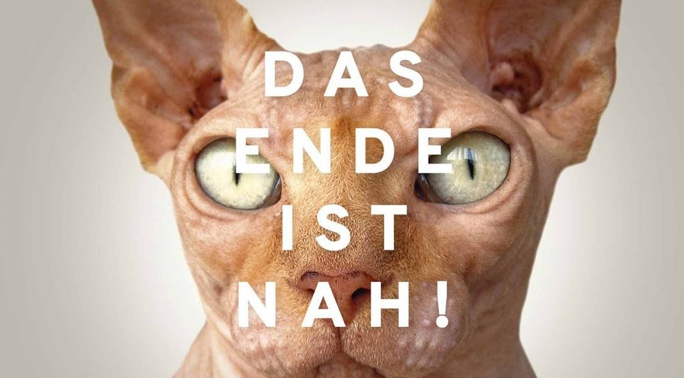 Was hat diese Katze mit dem Weltuntergang zu tun? Rätsel über Rätsel ... Bild: BR/ ORF / Collage