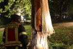Die Feuerwehr musste den Baum sofort fällen. Foto: Daniel Heesch / Feuerwehr Herdecke