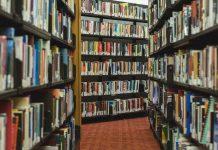 Rund 8.000 Bücher der Stuttgarter Uni-Bibliothek sind durch Ratten zerstört worden. Foto: StockSnap / pixabay (CC0)