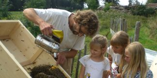 Machen den Sachunterricht lebendig: Bienen. Foto: Mellifera e. V.