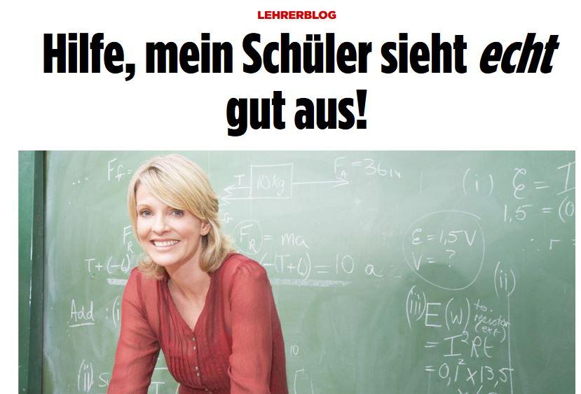 """Sonst keine Probleme? Der """"Lehrerblog"""" auf Bild.de / Screenshot"""