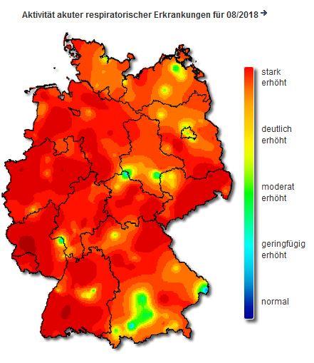 """grippe karte deutschland Alles rotzt und hustet"""": Grippewelle rollt durch Deutschlands"""