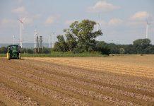 Bauernverbandspräsident Ruckwied wünscht sich, ein realistischeres Bild der Landwirtschaft in der Schule. Foto: DesignlandPfalz / pixabay (CC0 Creative Commons)