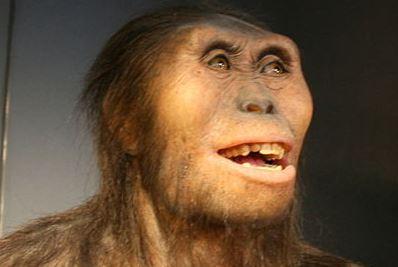 """So könnte """"Lucy"""" ausgesehen haben: Rekonstruktion von Australopithecus afarensis, so der wissenschaftliche Name. Foto: Nachosan / flickr (CC BY-SA 3.0)"""