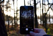 Digitale Medien können das Naturerleben nicht ersetzen, aber sinnvoll ergänzen. Foto: ledrogomalaurie / Pixabay (CC0 1.0)