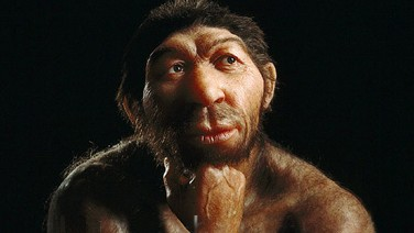 Rekonstruktionsversuch eines Neandertalers im Museum für Vorgeschichte in Halle. (Foto: State Office for Heritage Management and Archaeology Saxony-Anhalt / State Museum of Prehistory Halle/Wikimedia CC BY 3.0)