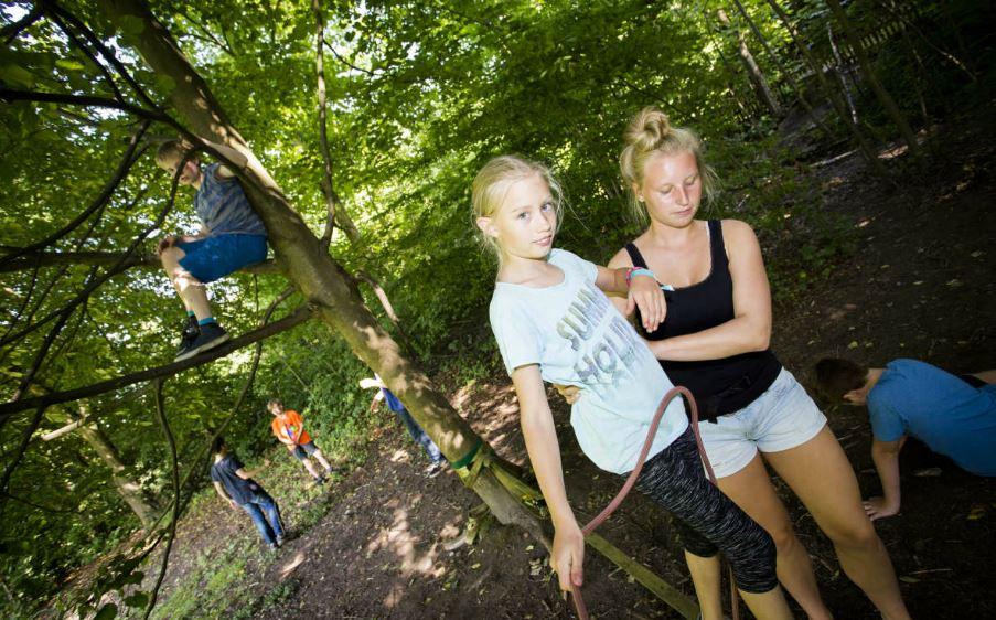 Wie formt man aus Einzelschülern ein Team? Programm in der Jugendherberge Essen. Foto: DJH Rheinland / Jugendherberge Essen