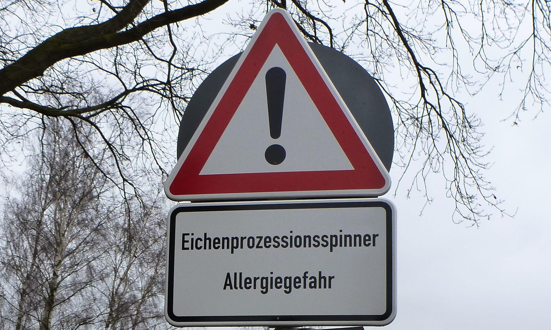 Eichenprozessionsspinner-Warnschild